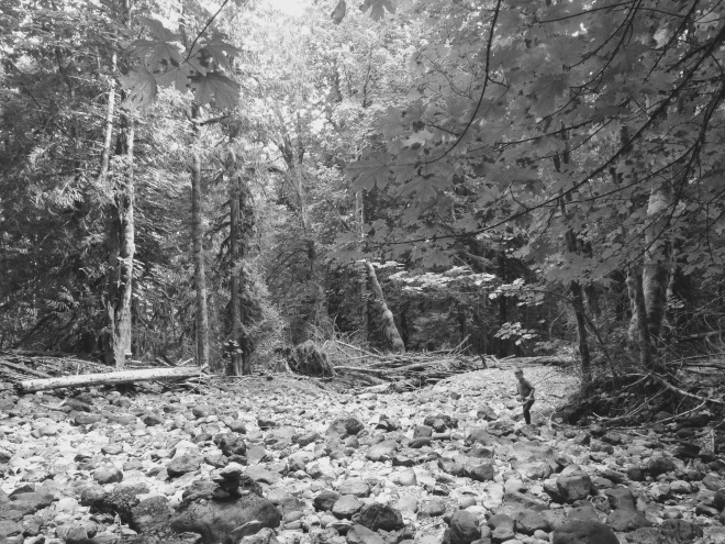 IMG_1942